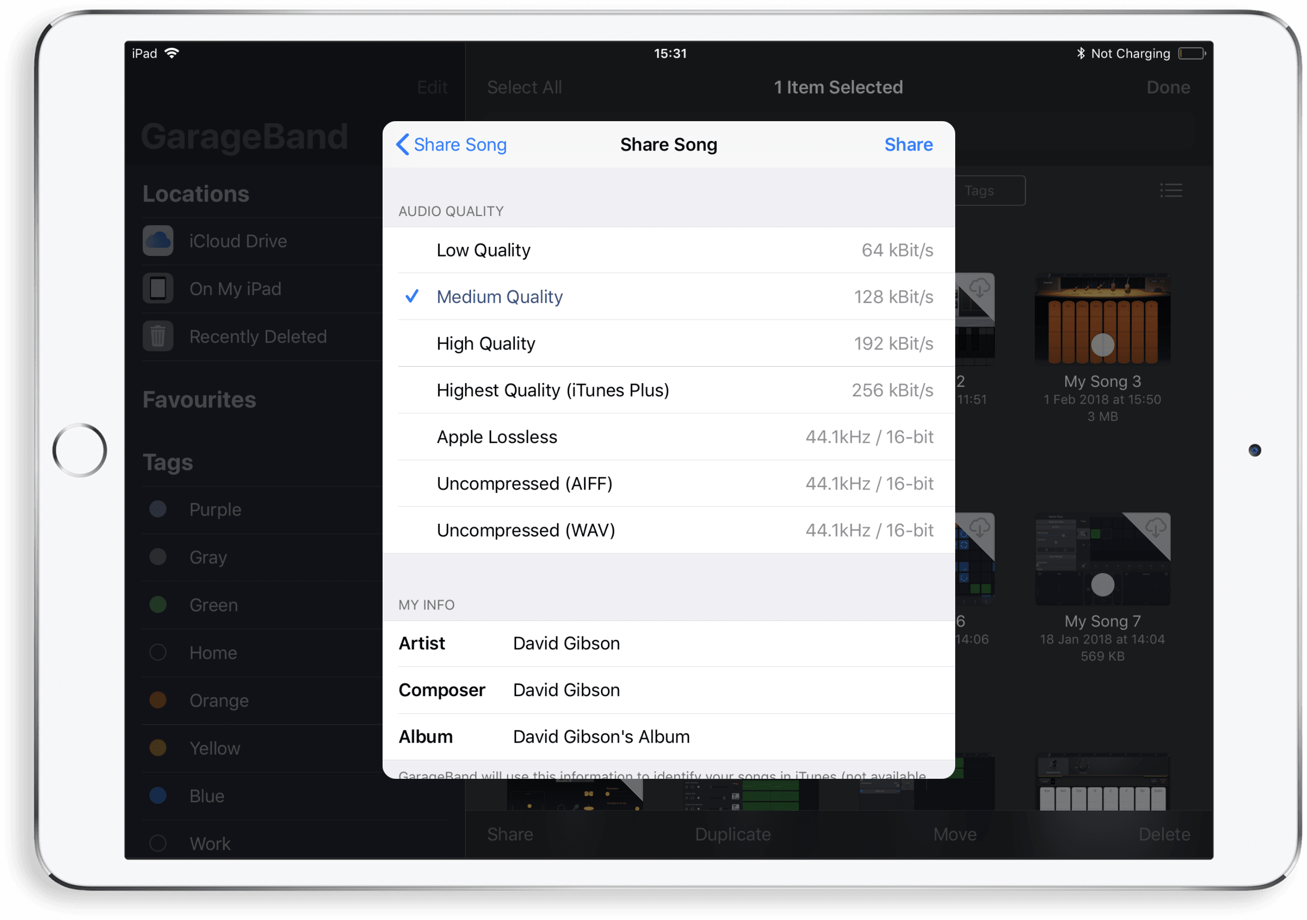 Audio Codec Audio File Format in GarageBand